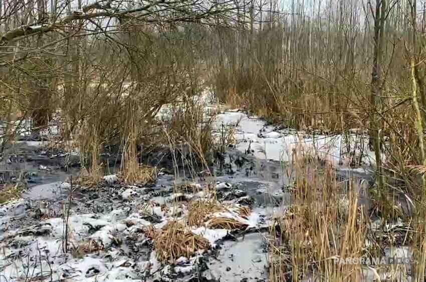 В Вышнем Волочке возбудили дело о сбросе нечистот в реку Цна. Фото, видео