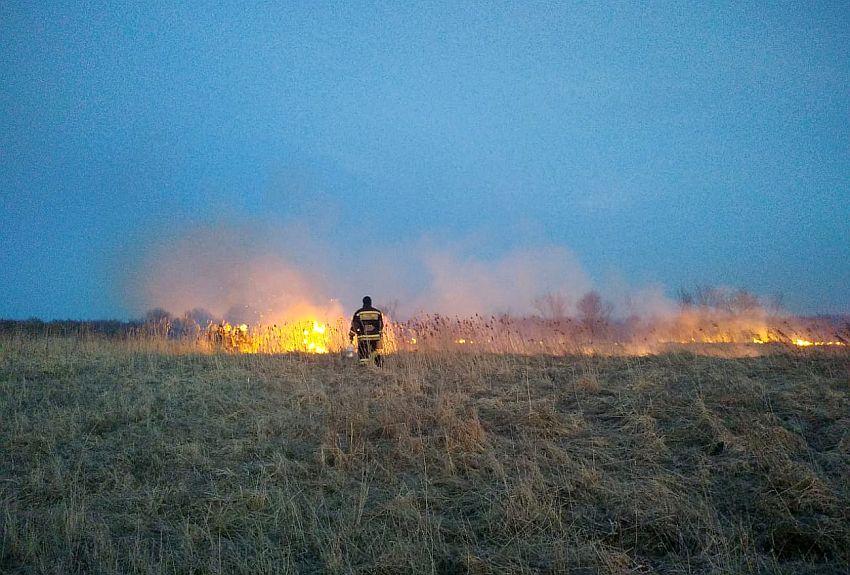 Под Бежецком едва не спалили лес