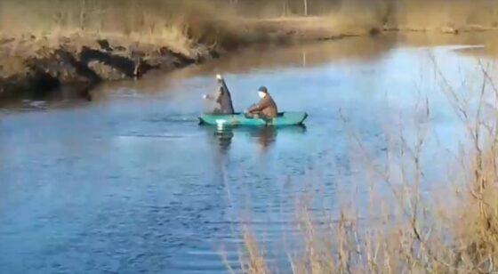 В Тверской области на Мологе браконьеры средь бела дня расставляют сети