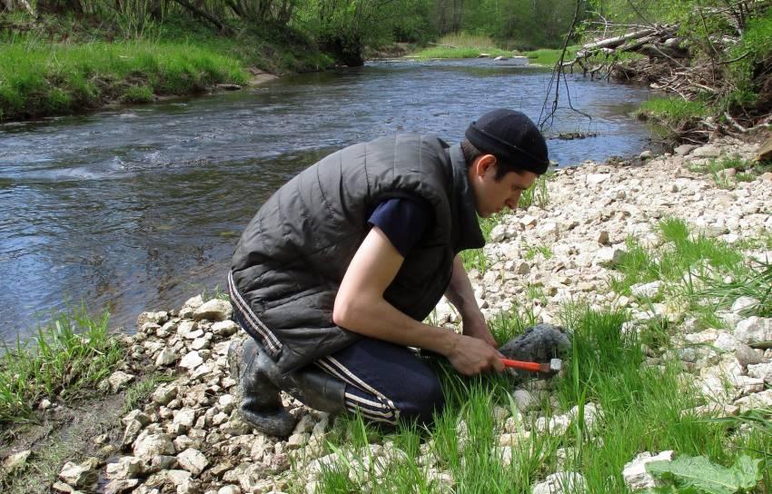 В Торопецком районе собрали останки вымерших миллионы лет назад существ