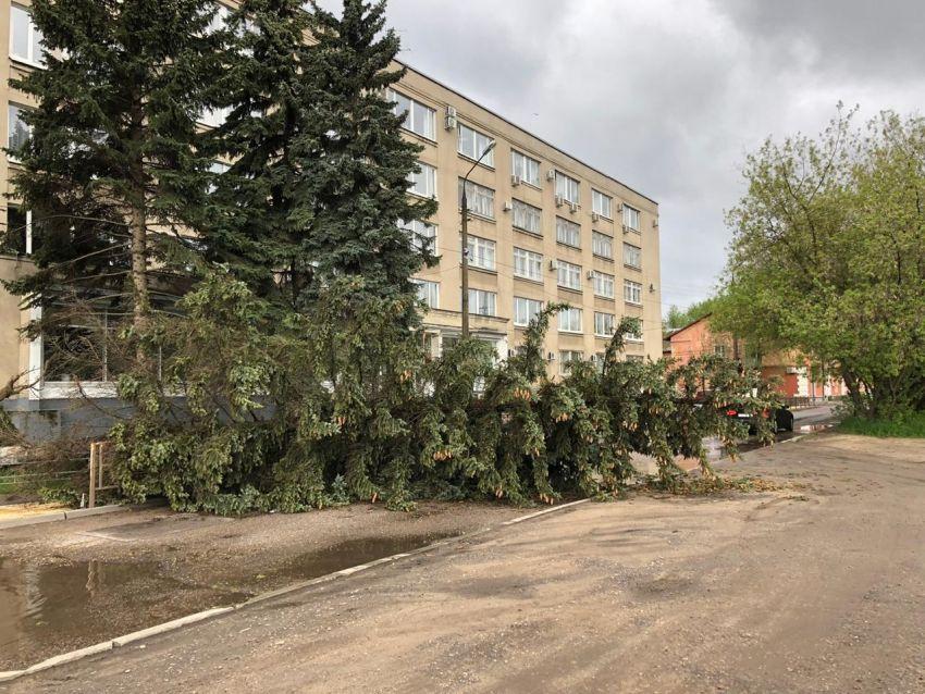 В Твери на Лазури ураган валил деревья