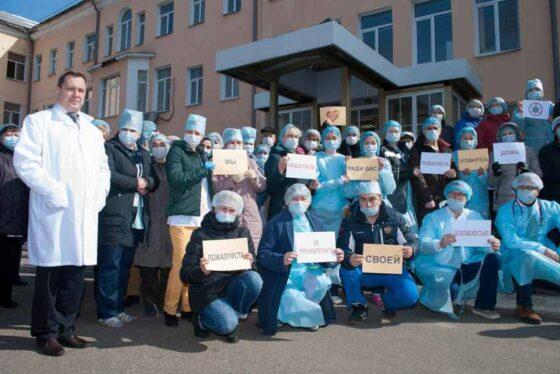 В Твери зоозащитники собирают деньги для врачей