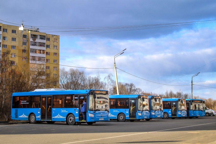 На 19-й маршрут Твери могут добавить еще четыре синих автобуса