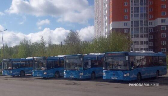 500 автобусов поедут в Кимры, Ржев, Торжок, Волочек