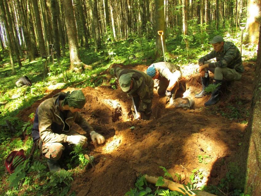 В лесу под Андреаполем нашли безымянного защитника Отечества
