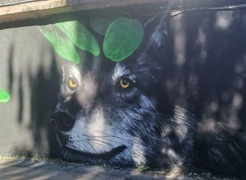 В Твери трансформаторная будка превратилась в «убежище» для хищников