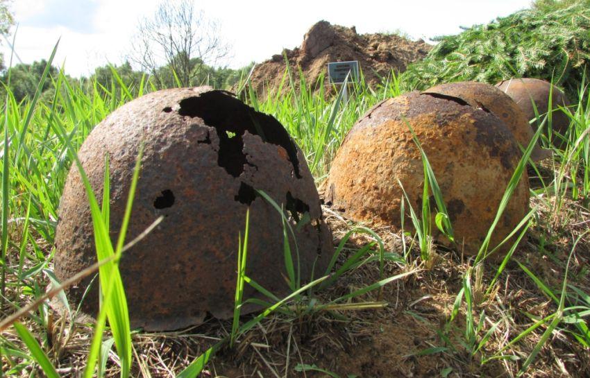 Под Питером обнаружены останки 29 калининских солдат. Разыскиваются родственники