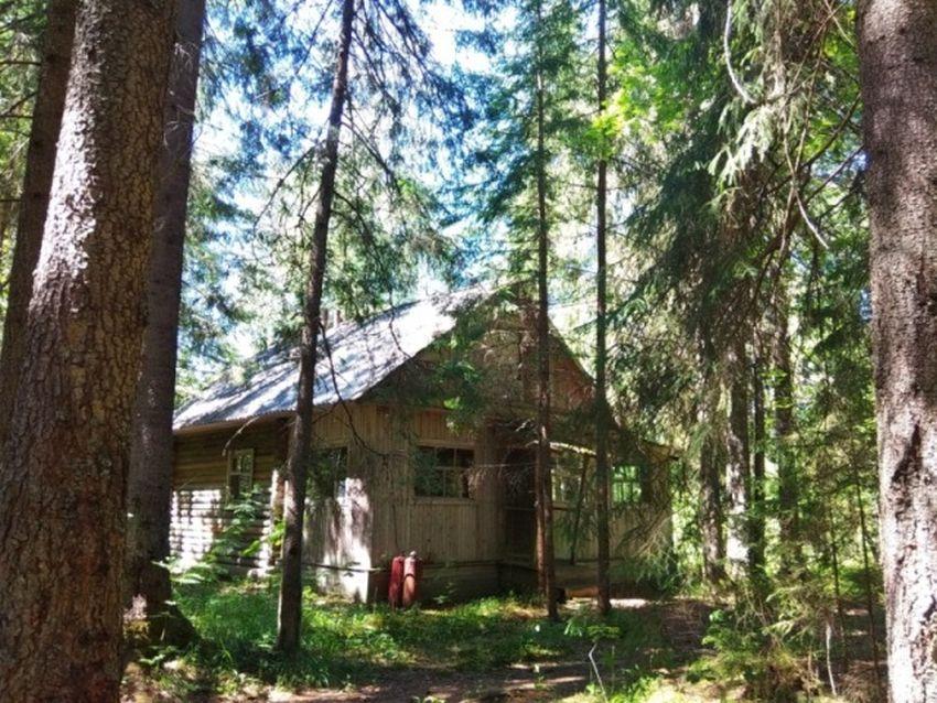Экомаршруты Тверской области представлены на федеральном ресурсе