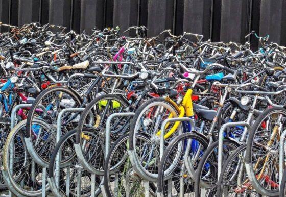 Тверские полицейские задержали супервора велосипедов