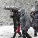 Синоптики обещают мягкую и снежную зиму