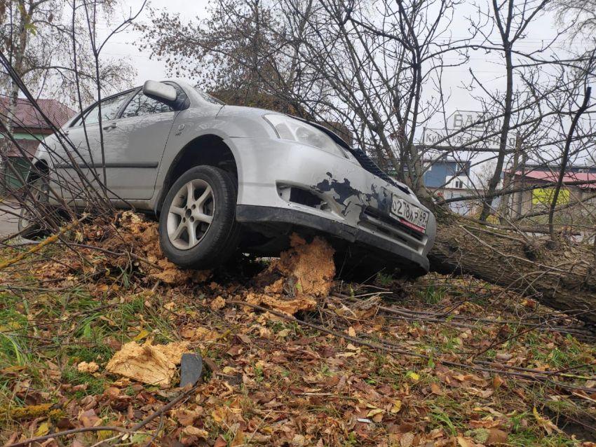 В Кимрах на крутом повороте иномарка опрокинула дерево