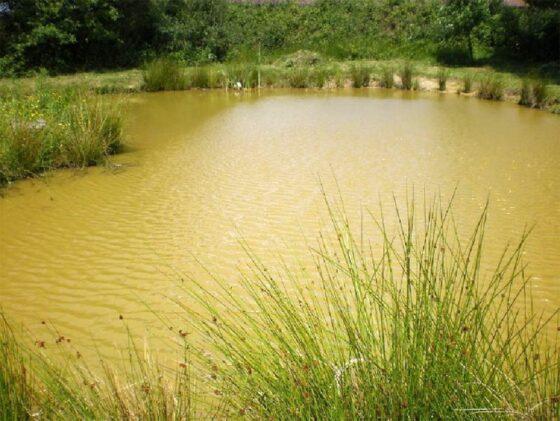 Водоканал из Тверской области поплатился за мутную воду