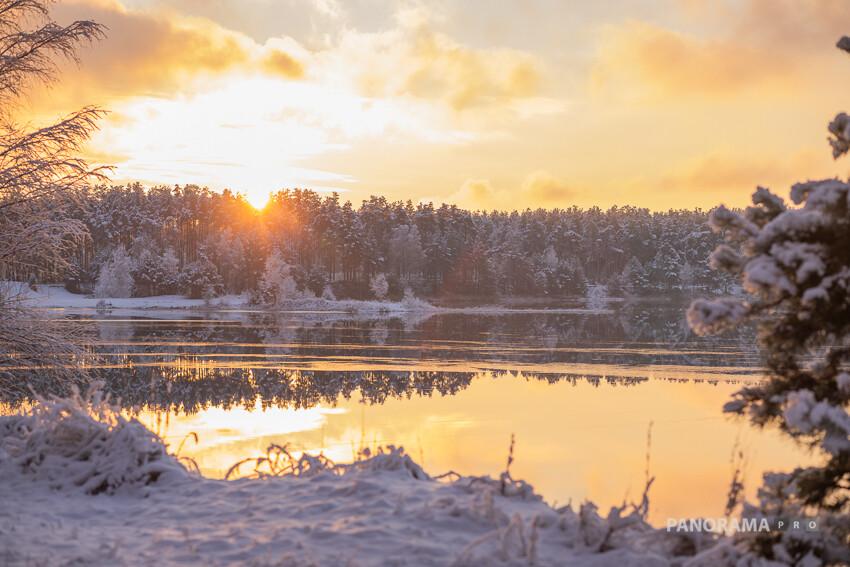 Природа намекнула, что зима в Тверской области будет настоящей