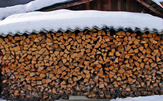 В Тверской области благотворительный проект про бесплатные дрова претендует на 1 млн рублей