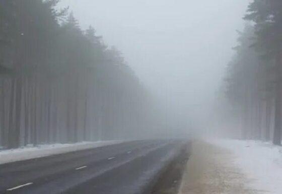 В Тверской области прогнозируют туман и мартовское тепло