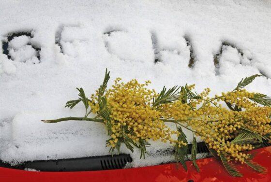 Климатическая весна опоздает в Тверскую область на пару недель
