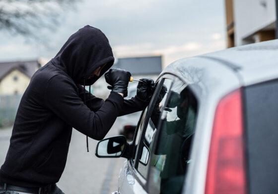 В Тверской области под суд пошли родственники, промышлявшие кражами  автомобилей