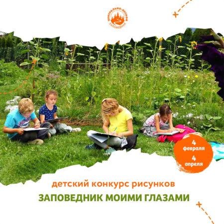 Лучший детский рисунок украсит сувениры Центрально-Лесного заповедника в Тверской области