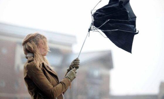 В Тверской области ожидается сильный порывистый ветер
