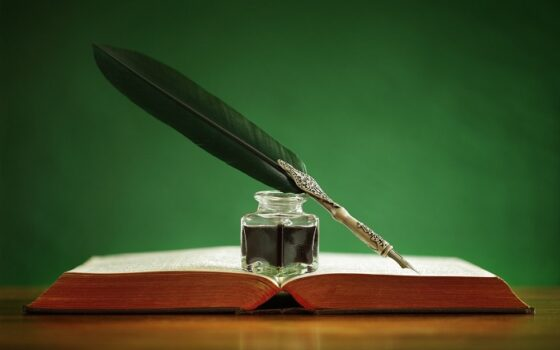 Работа в котокафе вдохновила тверского волонтера на выпуск книги стихов