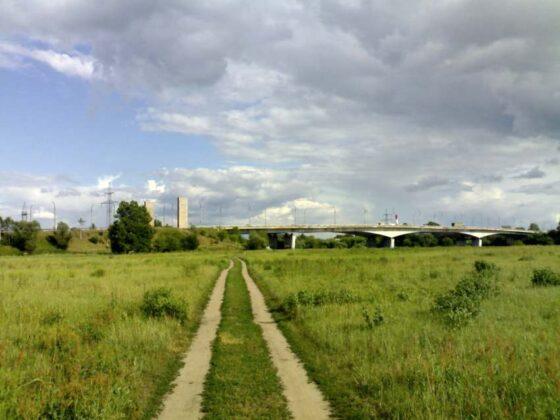 В Твери на берегу Волги может появиться парк с велодорожками и детскими городками