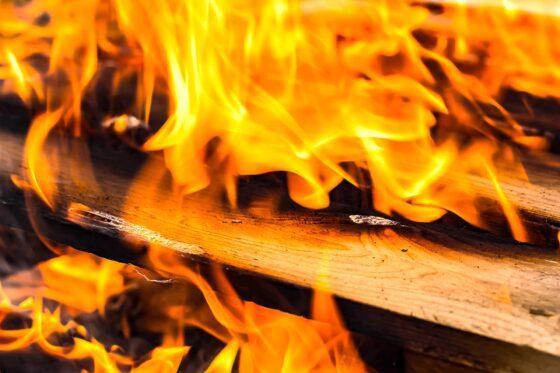 В Тверской области на пожаре погиб 38-летний мужчина