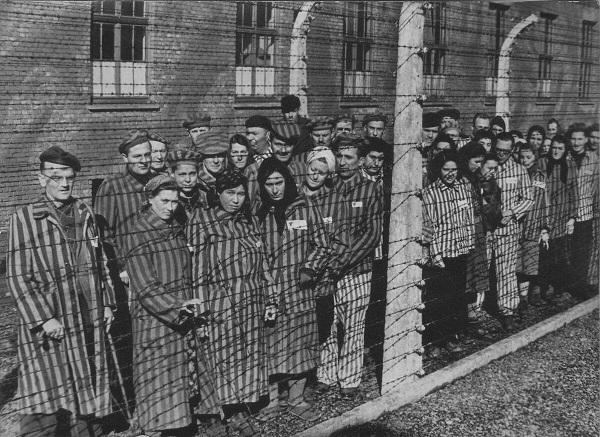 Жители Твери смогут узнать о судьбах жертв нацистской оккупации