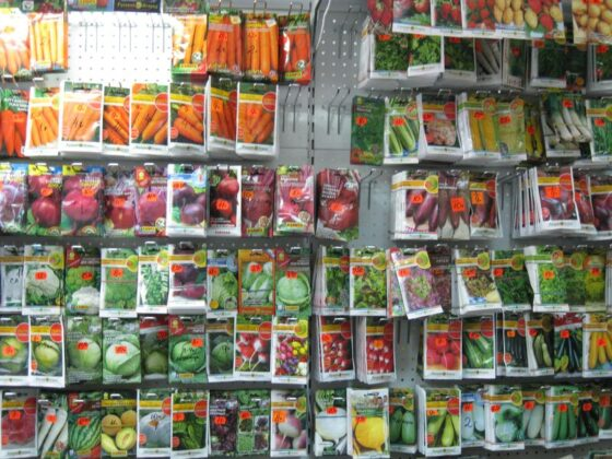 Семена в пакетиках, которые продавали  на рынках Торжка и Ржева, не взойдут