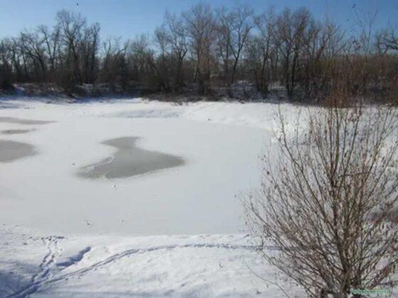 Следы исчезнувшей в Тверской области девочки ведут к реке