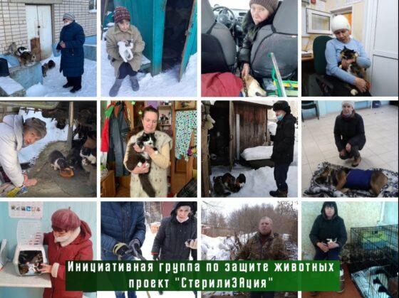 В Твери проект помощи животным помог пенсионеркам-волонтерам стерилизовать 40 кошек и собак