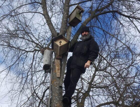 Под Тверью протоиерей залез на дерево