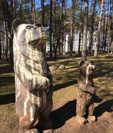 В Тверской области вандалы изуродовали медведей