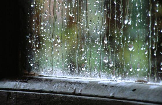 В Тверскую область придут затяжные дожди