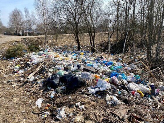 В Тверской области из-за отсутствия мусорных баков появилась большая свалка