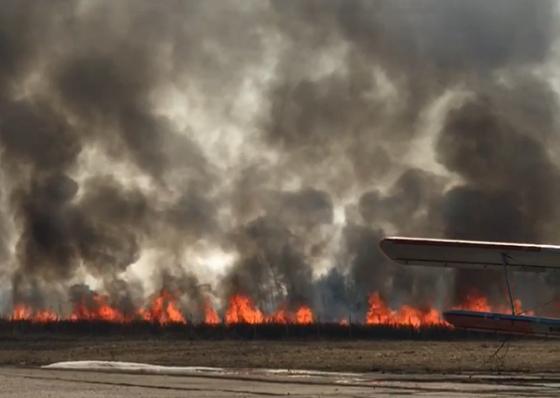 Авиамедведь родом из Тверской области боится, что огонь уничтожит его дом