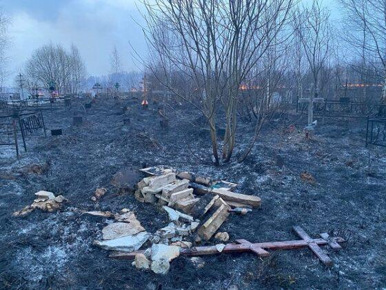 В Тверской области горело кладбище