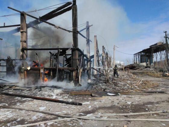 В пожаре под Тверью никто не пострадал