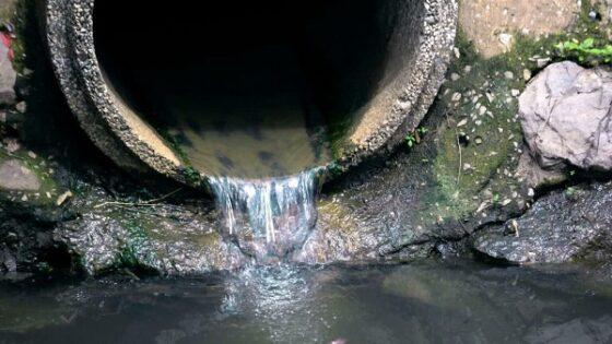 В Тверской области сточные воды с очистных загрязняли почву