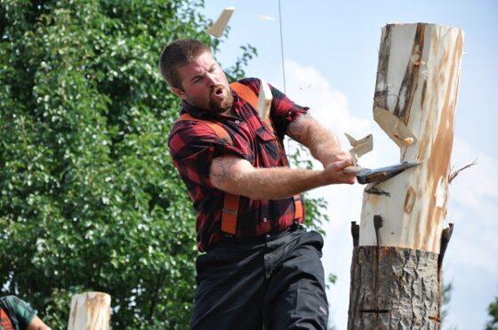 В Твери для съемок фильма нужно вырубить крест высотой 2, 5 метра