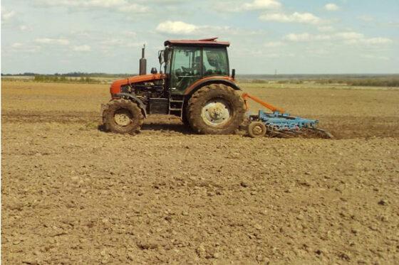 В Тверской области осужденные сажают помидоры, капусту и картошку