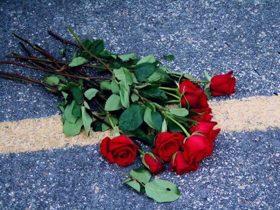 В Лихославльском районе водитель выехал на встречку, его пассажирка погибла на месте