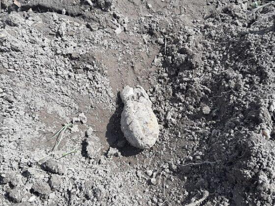 Под Тверью прохожий на дороге нашел гранату времен Великой Отечественной войны