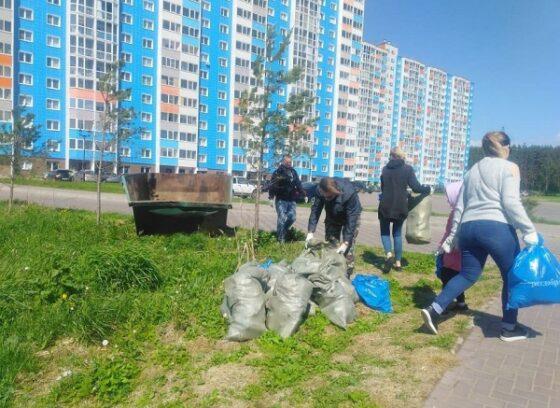 В Твери за два месяца вывезли 1200 кубометров мусора
