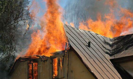 Страшное зрелище: очевидцы о пожаре в Бологовском районе