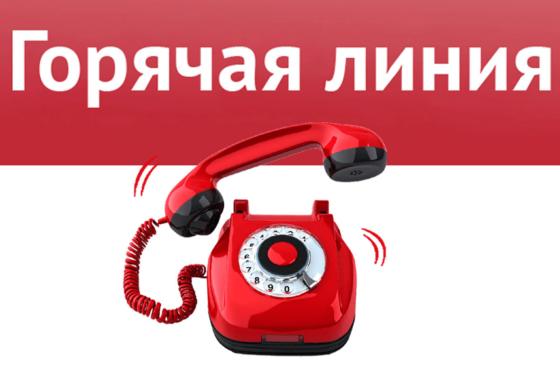 В Тверской области Пенсионный фонд запускает горячую линию  для мам
