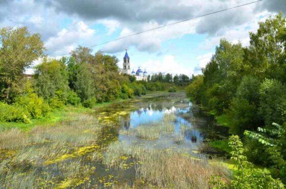 Правительство страны выделит деньги на расчистку реки в Тверской области
