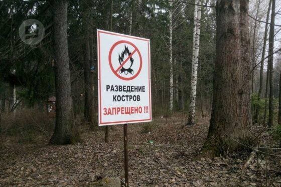 В Твери на майских праздниках  запретили сжигать траву и разводить костры