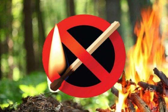 МЧС предупреждает о высокой пожарной опасности в Тверской  области