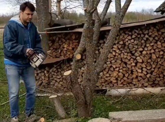 Известный  тверской актер ради искусства уничтожил дерево