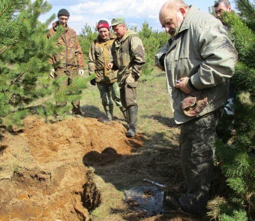 На пленэре в Тверской области нашли останки погибшего солдата